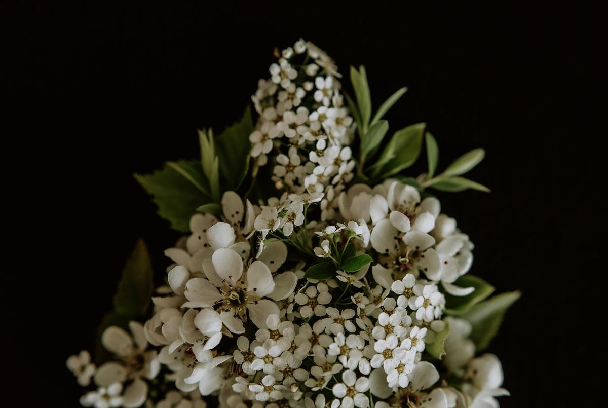 Kwiaty w bieli 03 Monika Borlin Photography wydruk print fotografia autorska plakat aranżacja wnętrz dekoracja Warszawa